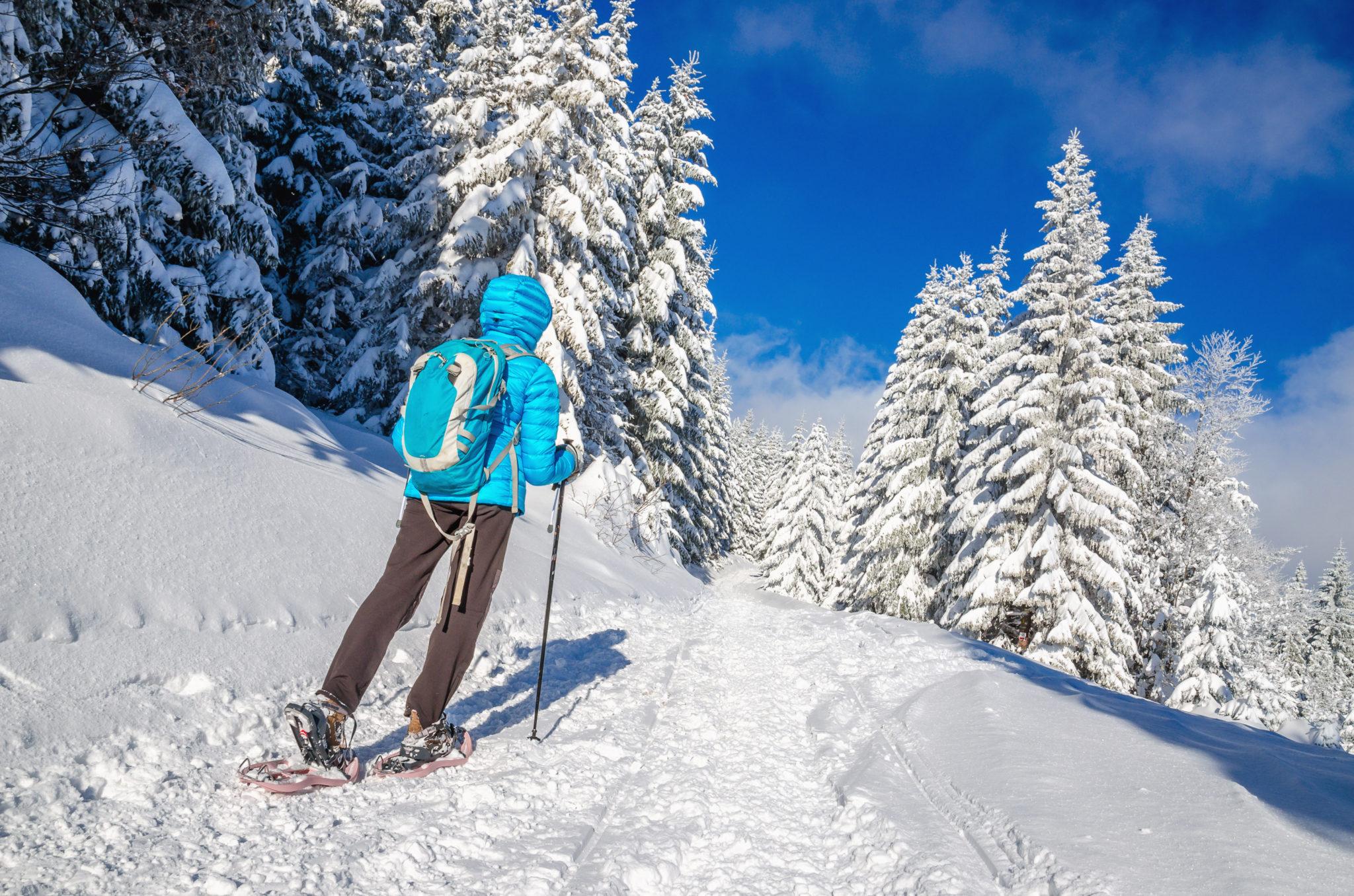 Snow Shoe Trails