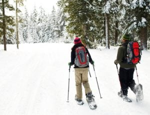 Two snowshoers head out on trail