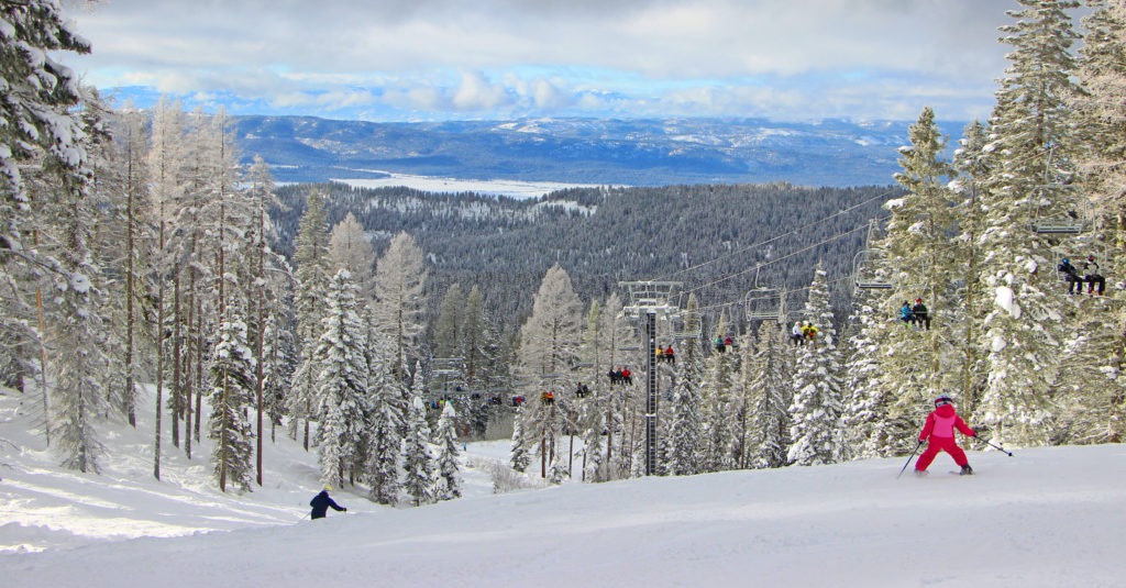 bear chair ski