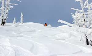 powder skier blue sky