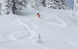 tall guy skis powder