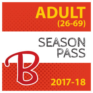 Adult pass icon