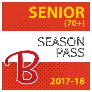 Senior pass icon