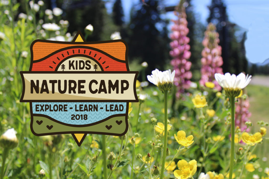 Kids Nature Camp Graphic