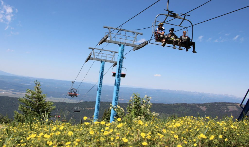 Bikers on chairlift, wildflowers in foreground