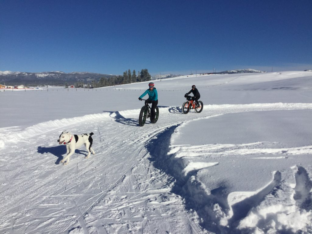 Fat Biking on Dog Friendly Nordic Trail