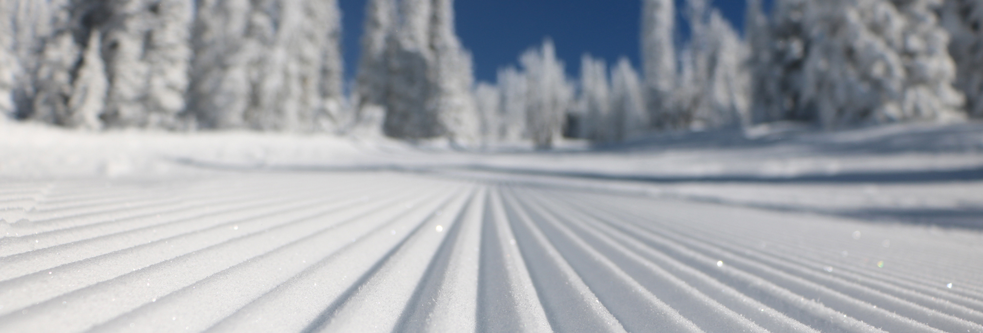 [satisfy]Covid-19 Update[/satisfy] BRUNDAGE MOUNTAIN IS CLOSED